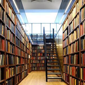 Библиотеки Эртиля